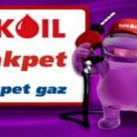 worldcard-com-tr-lukoil-akpet-2014